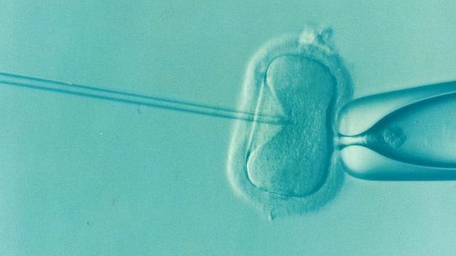 試管嬰兒使用新鮮胚胎勝過冷凍胚胎