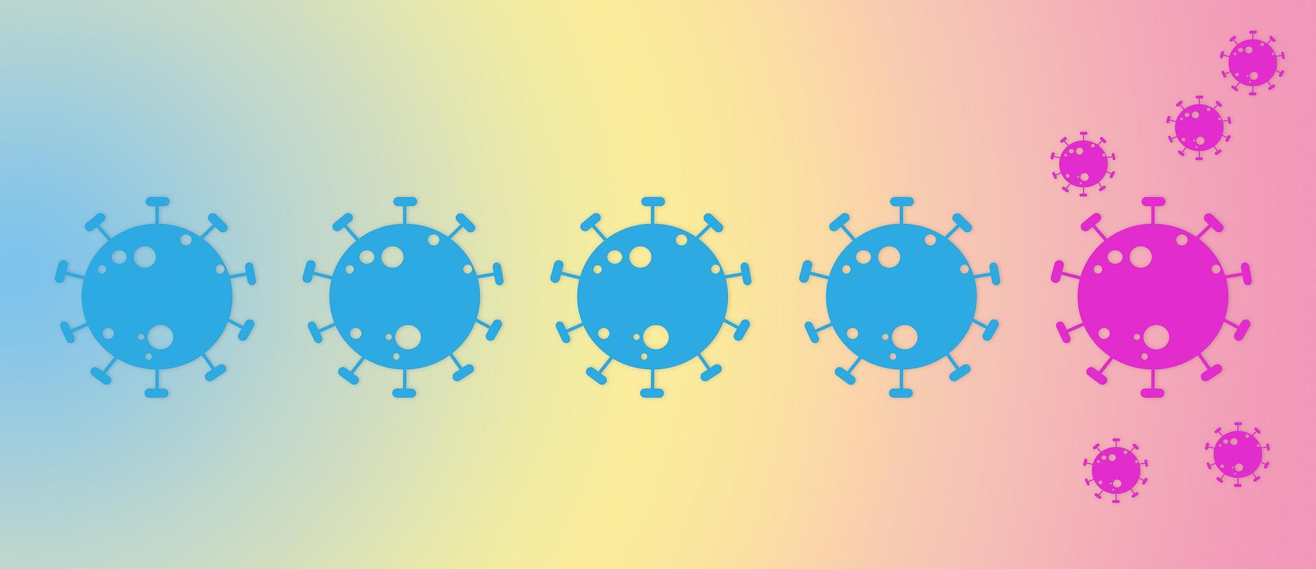 WHO:COVID病毒C.1.2變種似乎沒有散播開來